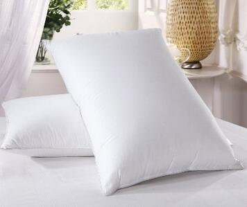 750 Filled Goose Down Pillow Pillow Reviewer