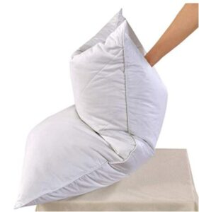 soft down feather bed pillows