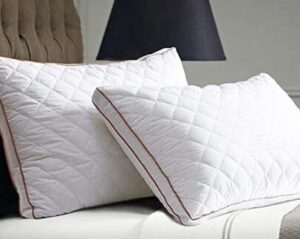 beegod supportive bed pillow