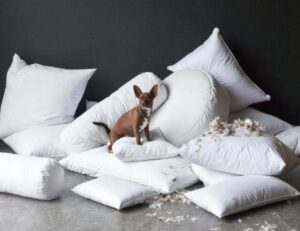 best price down feather pillows