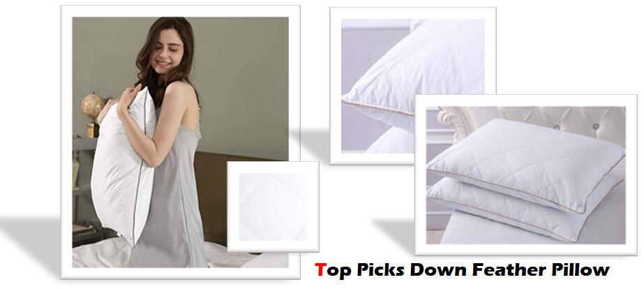 Best Quality Down Feather Pillows Reviews